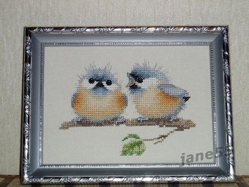 Фото для Птички