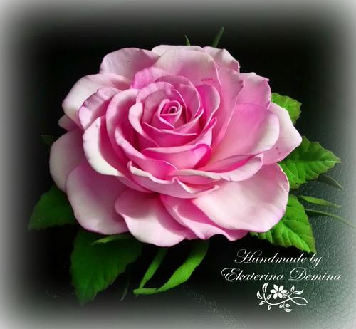 Фото для Розовая роза