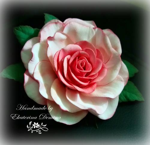 Фото для Роза