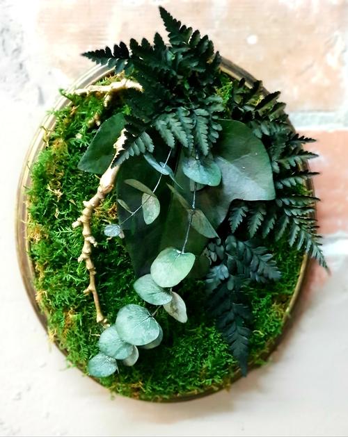 Фото для «Таи́нственный лес»