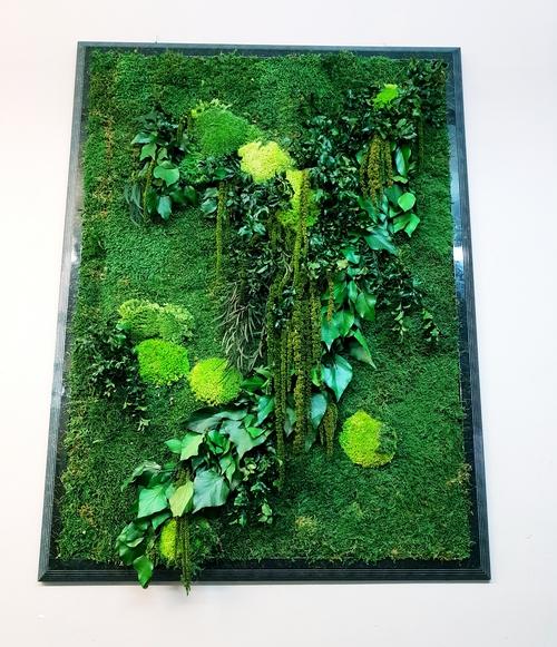 Photo of Фитодекор стабилизированными мхами и растениями